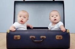 تولد دوقلوها از دو پدر!