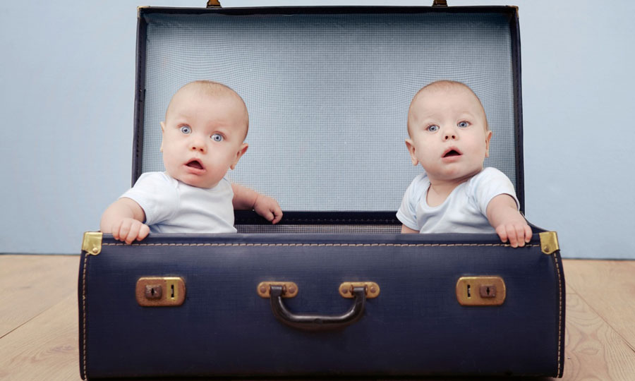 تولد دوقلوها از دو پدر