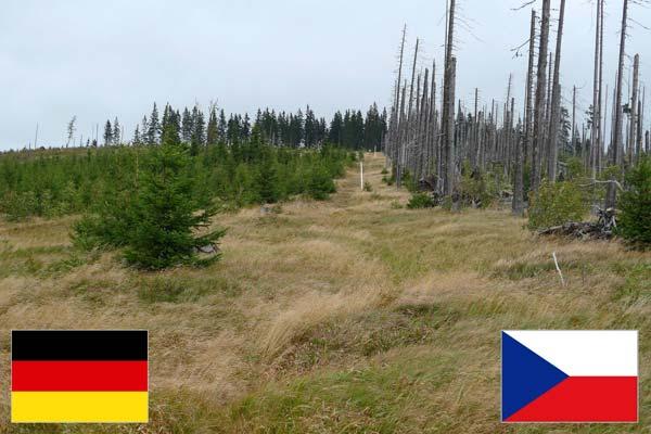 آلمان و جمهوری چک