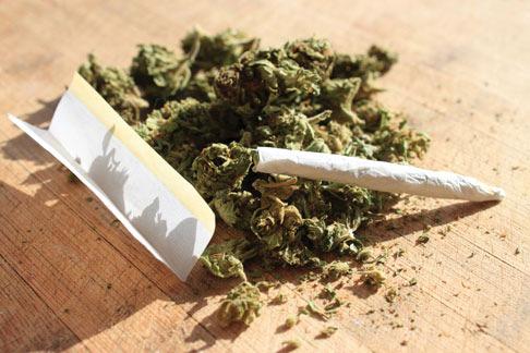 ماری جونا cannabis