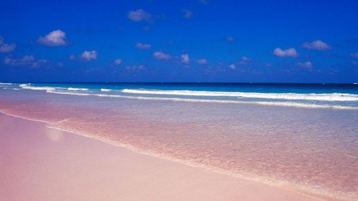 ساحل شنهای صورتی – باهاما