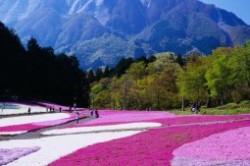 10 نقطه رنگارنگ دنیا + عکس