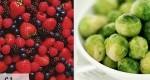 5 ماده غذایی مهم که باید به اندازه کافی مصرف کنید