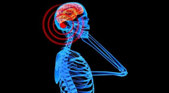 عوارض امواج تلفن همراه