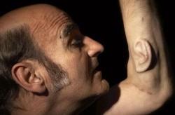 مردی با دو گوش بر روی بازویش+عکس