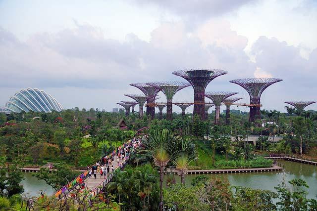 باغهای خلیج