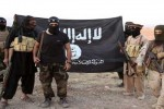 آمار داعش daesh