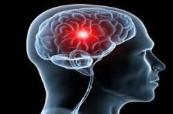 آیا ضریب هوشی بیشتر طول عمر انسان را افزایش میدهد؟