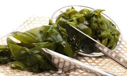 منابع پروتئین گیاهی,جلبک