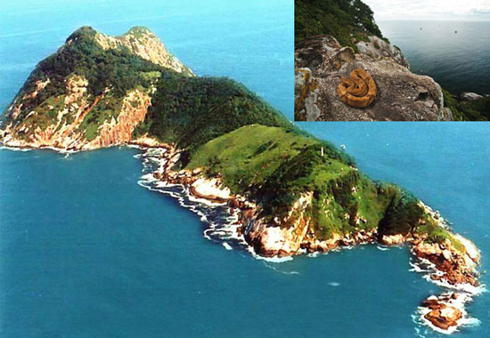 مخوف ترین جزایر جهان