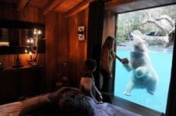 با ترسناکترین اتاقهای هتل دنیا آشنا شوید+عکس