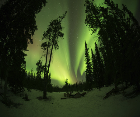 شفق شمالی Northern-Lights-Canada