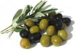 زیتون Olive