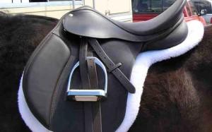 زین Saddle