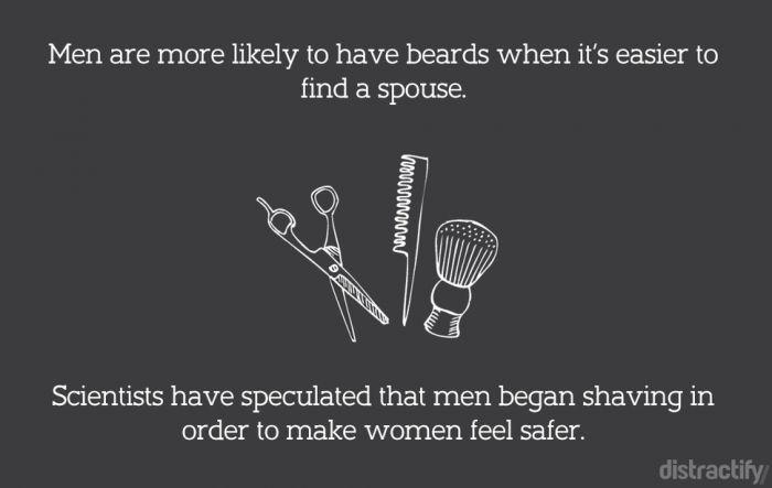 beards7