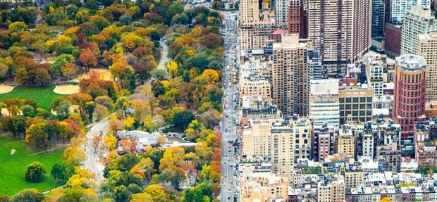 کنتراست باورنکردنی دو دنیا : شهر و سنترال پارک نیویورک