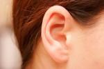 گوش ear
