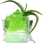 green-aloe-vera-gelفواید گیاه آلوئه ورا