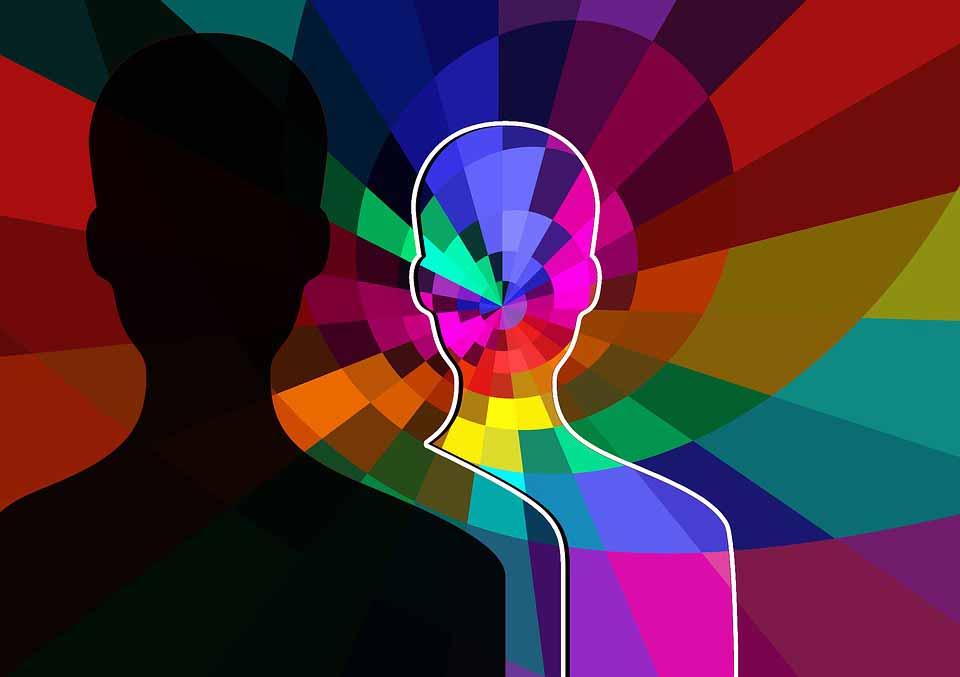 head-1292294_960_720