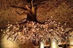 درختی که به لوستری باشکوه تبدیل شد!