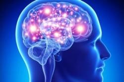 ده باور نادرست درباره مغز انسان
