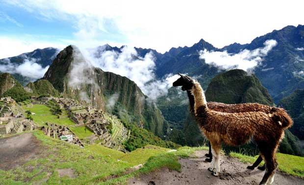 ارزون ترین مقاصد گردشگری جهان,lama-and-machu-picchu-peru-1600x1067