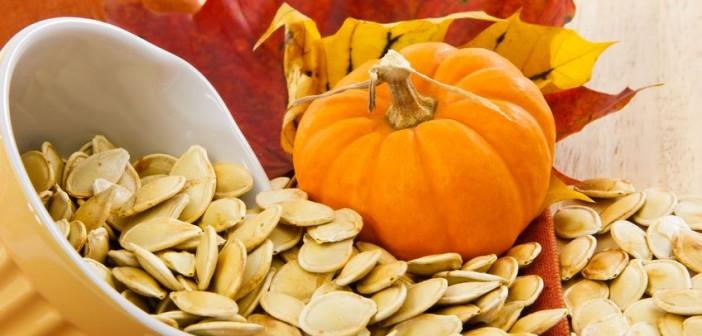 دانه کدوتنبل pumpkin-seeds
