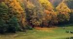 پارک جنگلی النگدره؛یک تجربه متفاوت از ایرانگردی