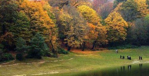 جنگل اَلَنگدره Alangdarre