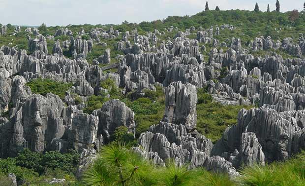 عجیب ترین جاذبه های گردشکری دنیا,shilin-stone-forest-china