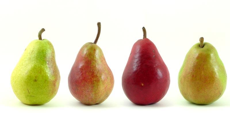 گلابی و کاهش وزن pears