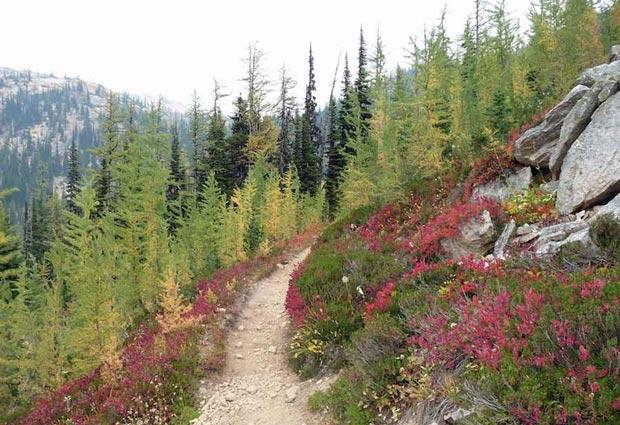 بهترین مسیرهای دنیا برای پیاده روی در طبیعت