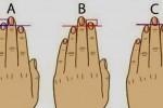 شخصیت شناسی انگشت دست hand-Personality