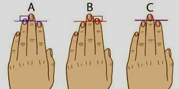 شخصیت شناسی طول و شکل انگشتان دست
