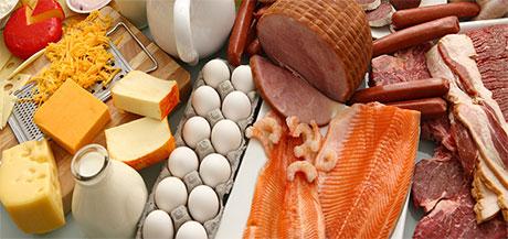 منابع اصلی پروتئین