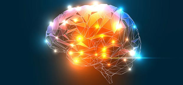 ورزش مغز Brain