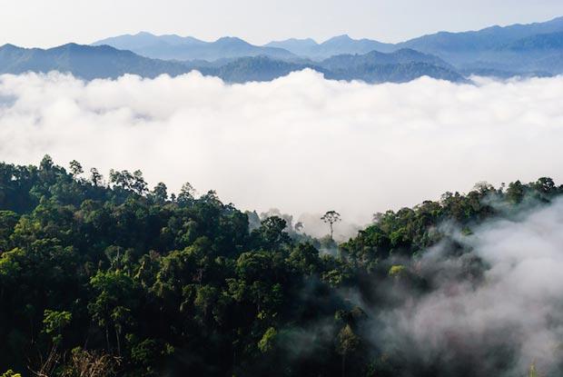 پارک ملی کائنگ کراچان kaeng_krachan_national_park