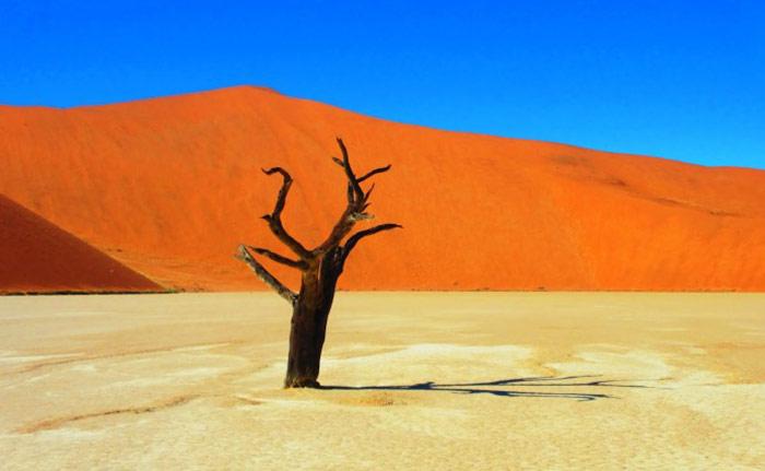deadvlei-namibia-woe6-690x425