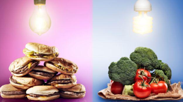 غذاهای مضر برای مغز | ۱۰ خوراکی که قاتل سلامت مغز شما هستند