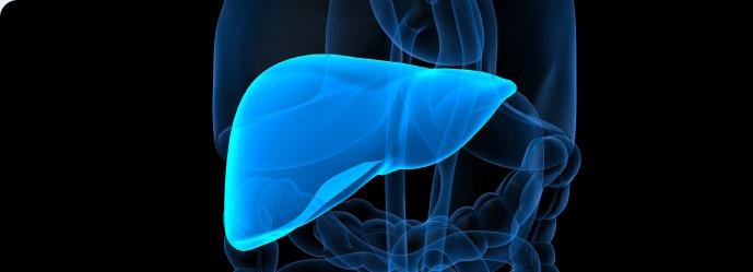 نارسایی کبد liver-failure-img