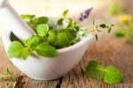 گیاهان آرامبخش Herbal-Sedatives