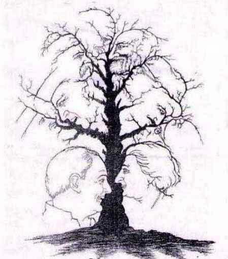 تست هوش تصویری درخت