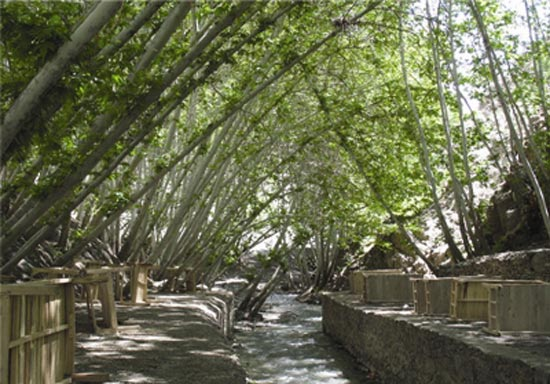 جاهای دیدنی گردشگری مشهد