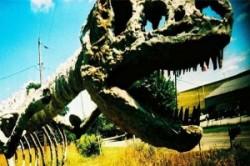 باورهای اشتباه درمورد دایناسورها