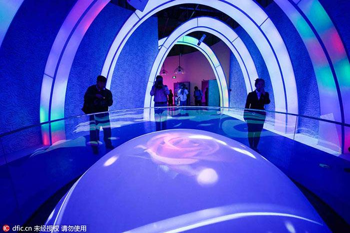 موزه گل رز پکن the Beijing Rose Museum