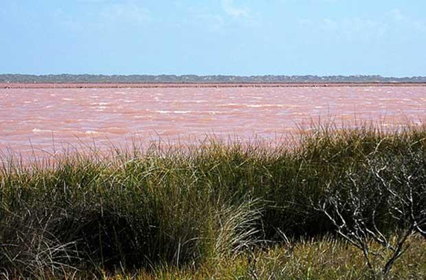 استرالیا، Hutt Lagoon