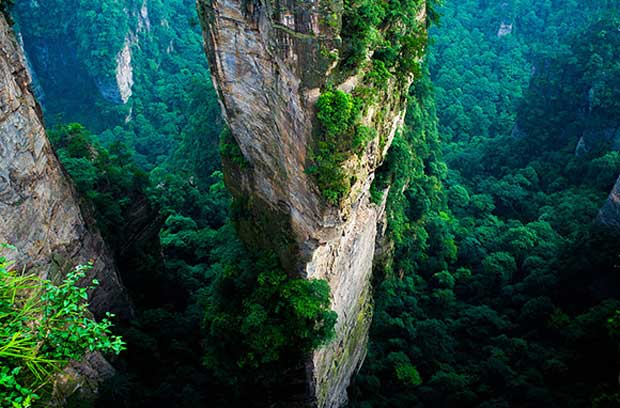 چین، Zhangjiajie National Forest Park