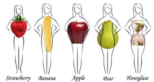 body shape 2