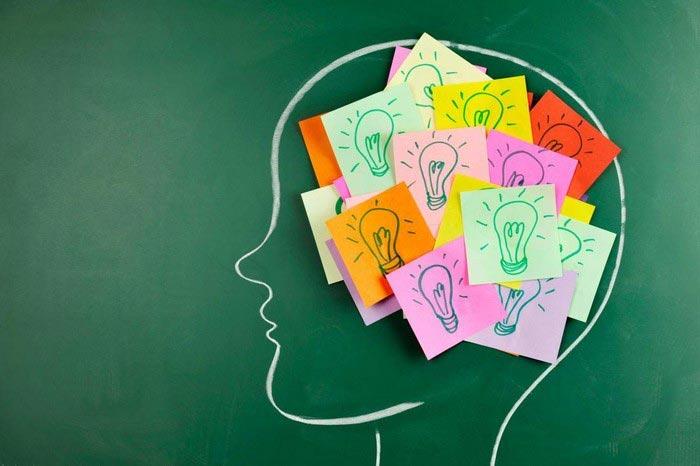 سبک زندگی و سلامت مغز brain