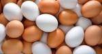 خواص تخم مرغ برای سلامت بدن